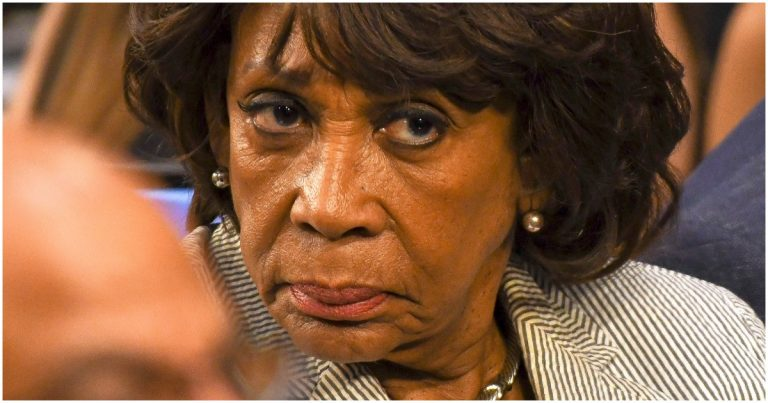 Maxine Waters Links Trump to Epstein, Says POTUS Was One of the Pedo's Best Friends