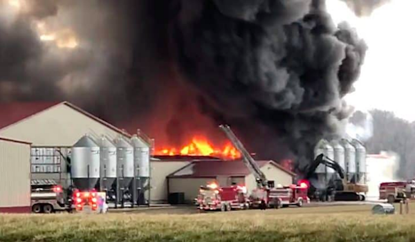 Deplorable Farmer Targeted By Clinton Obama Arsonists